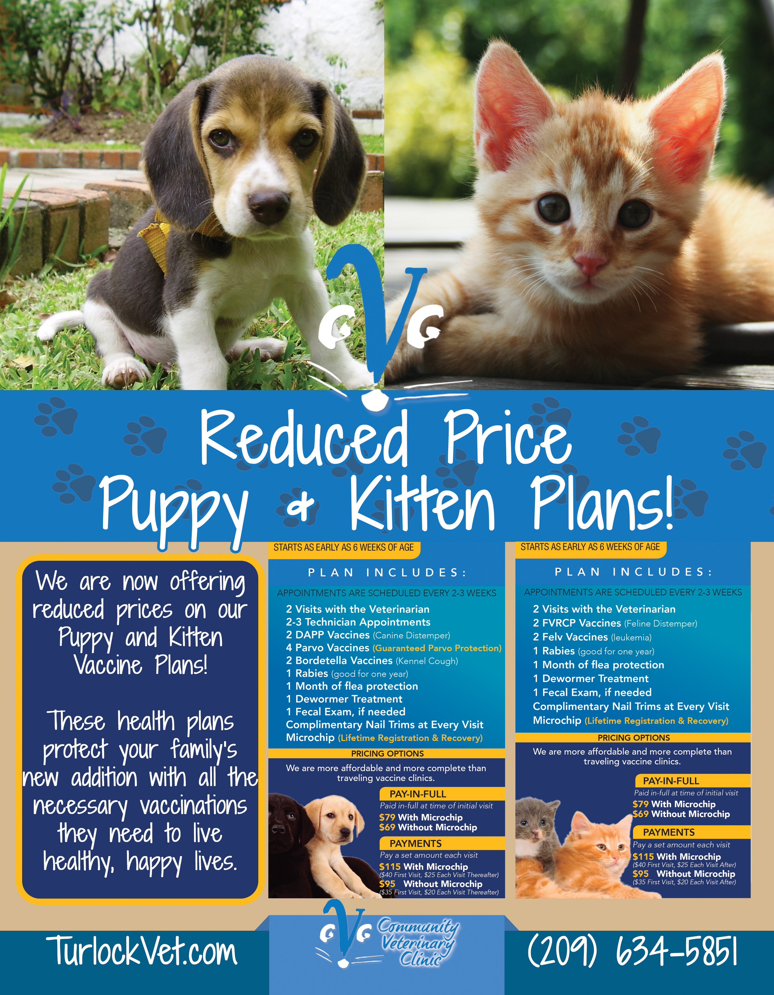 Puppy & Kitten Health Plans - Animal Hospital in Modesto, CA