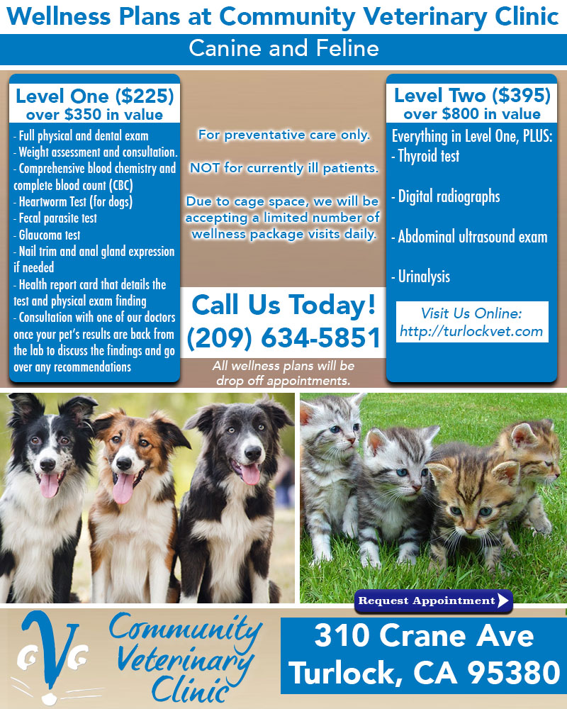 Pet Wellness Plans - Community Veterinary Clinic - Turlock,CA