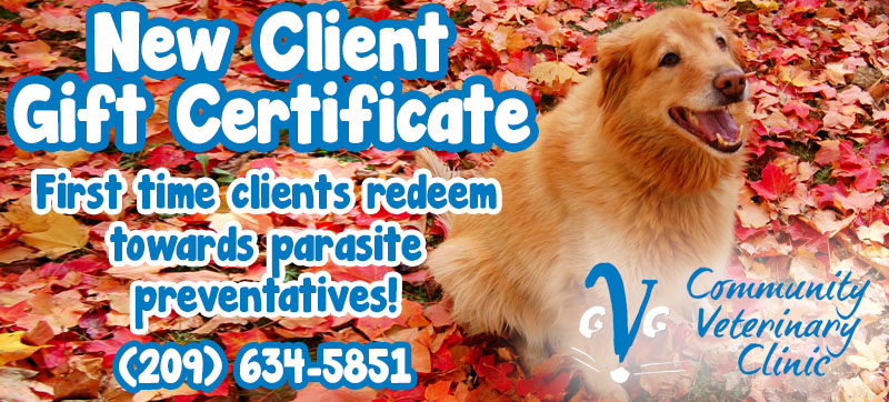 New Client Gift Community - Community Veterinary Clinic - Turlock, CA