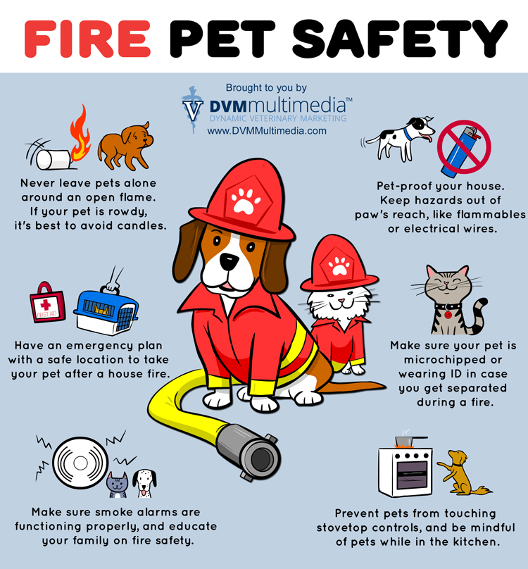 Fire Pet Safety - Community Veterinary Clinic - Turlock, CA