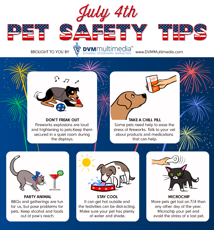 July 4th Pet Safety Tips - Community Veterinary Clinic - Turlock, CA