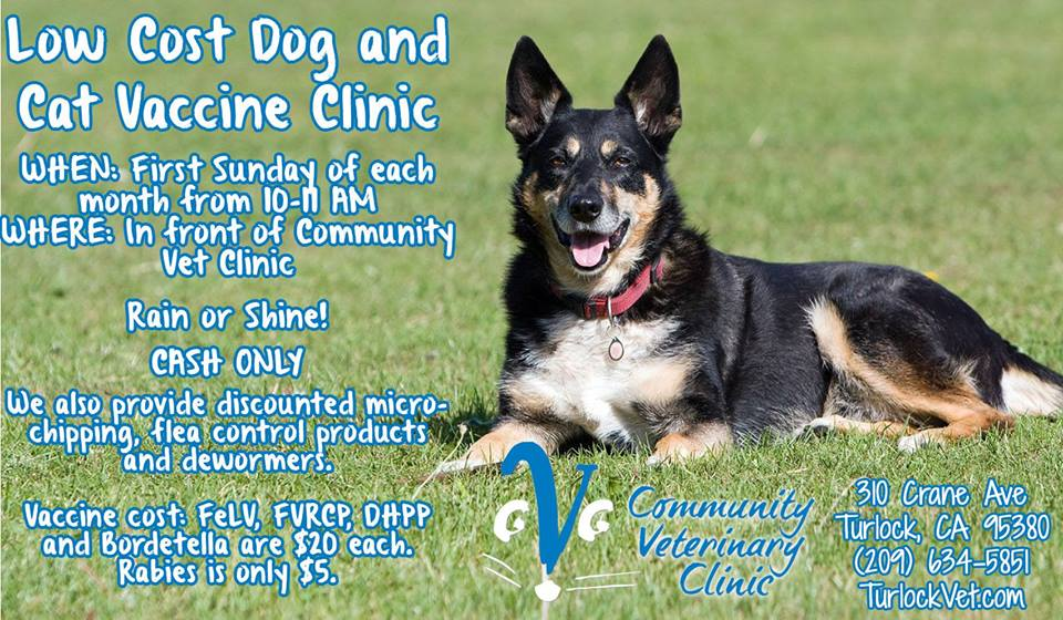 Low Cost Dog and Cat Vaccine Clinic - Community Veterinary Clinic - Turlock, CA